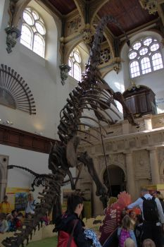 Wollaton Hall - Dinosaurs of China by solair