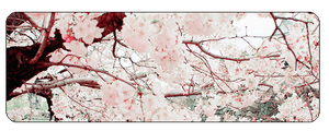 F2u Cherry Blossom by Evan-escence