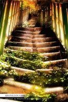 Stairways to Heaven by Anstellos