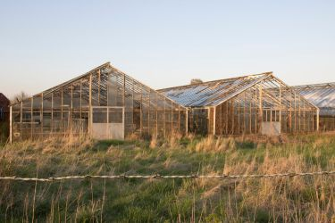 STOCK Glass houses by Inilein