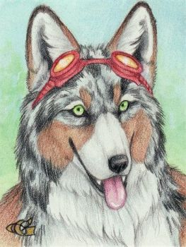 Syber Badge by Goldenwolf