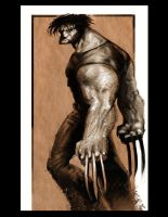 Wolverine by ARTofANT