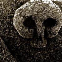 Frosted Skull by FalseMaria