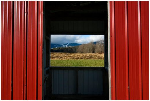 Through the Shed by Delacorr