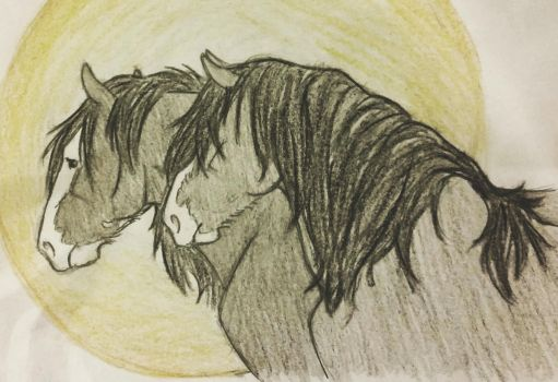 Shires by JenniferBee