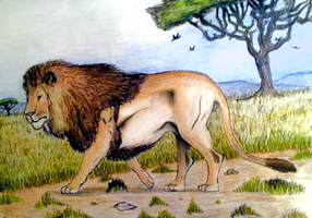 The King of Africa by CoelurosaurianArtist