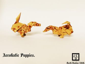 Acrobatic Puppies - Barth Dunkan. by Barth-Dunkan