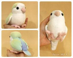 small parrot, plush by icecream80810