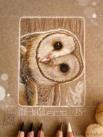 25 -  Barn Owl by Loisa