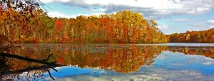 French Creek Panorama by FauxHead