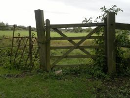 The Gate to Nowhere by redstarling