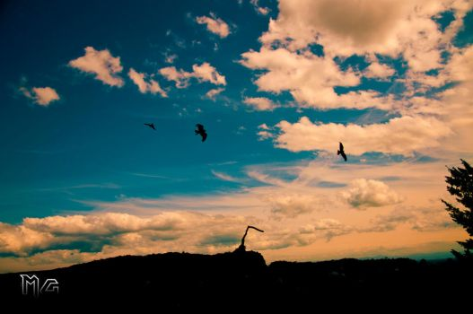 We can fly and we know it by Goethesphoto