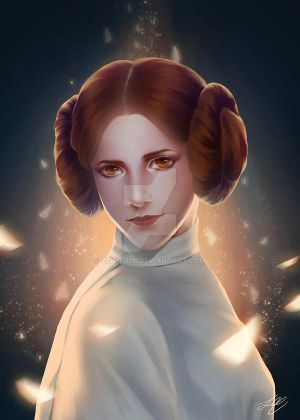 Princess Leia by zenithy90