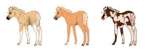 Palomino Foals - Sold by Miss-Adopts