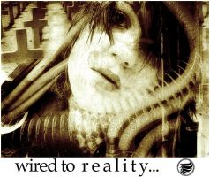 wired to reality... by leopic