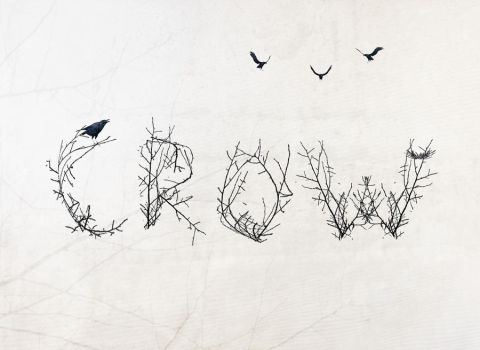 Crow-Type by Priitii