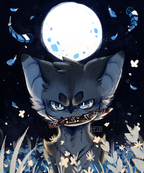 JayFeather by T-TiP