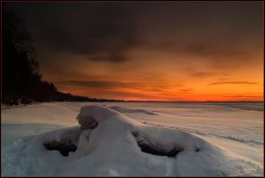March at Lake Simcoe by IgorLaptev