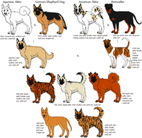 Canine Genetics Research Application- Mixed Breeds by Leonca