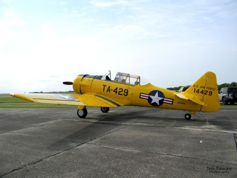 North American T-6 Texan by averybe