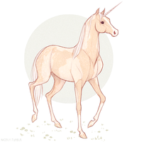 Unicorn by Naimly