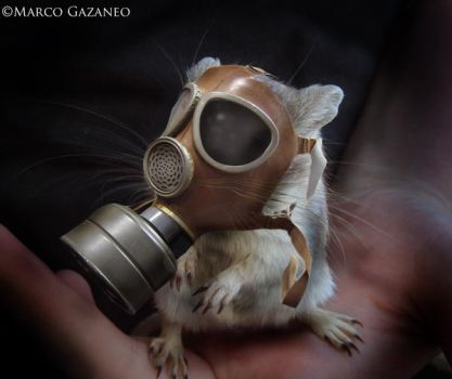 Scrat the Mouse by RomanticGoth