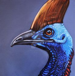 Cassowary  by HouseofChabrier
