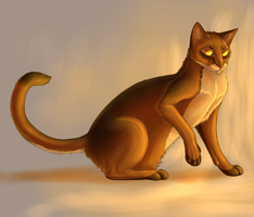 Cat by HEllRas