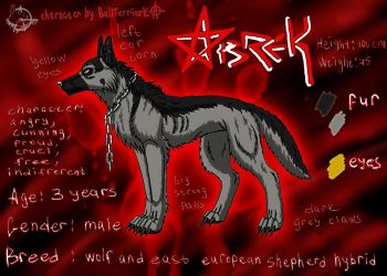 Abrek comics reference by BullTerrierKa