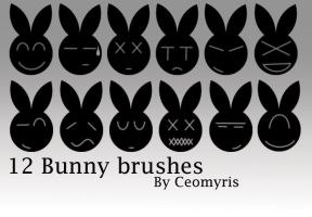 12 Bunny Brushes by Ceomyris