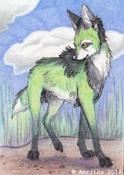 Nightfell ACEO by Amritha