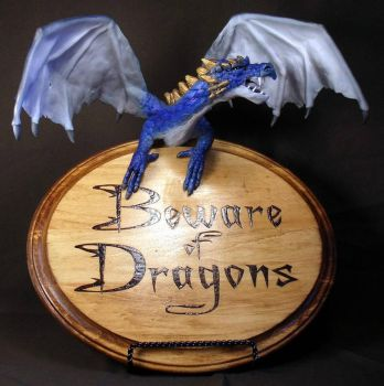 Beware of Dragons Sign by mysticalis