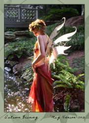 Angel, Autumn Evening 03 by phoxphoto