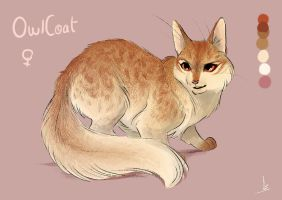 OwlCoat : mini ref by OwlCoat