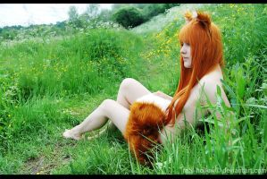 Spice and Wolf - Horo Nyu by namstar91