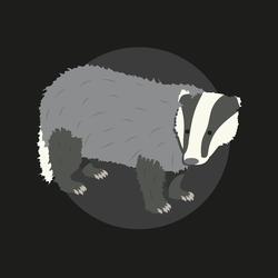 Badger by Ayi82