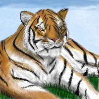 Tiger 2 by Silvro