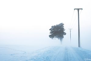 Foggy road by CJacobssonFoto
