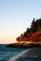 Maine Island by Mooseushi
