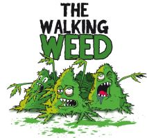 The Walking Weed by NuBus
