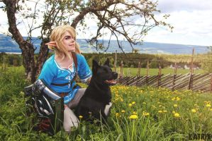 Journey - Breath of the Wild by SophieRiis