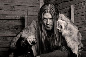 Viking by Fatalis-Polunica