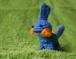 Mudkip 1 by Poolvos