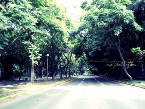 no cars...no pollution by blankiitha