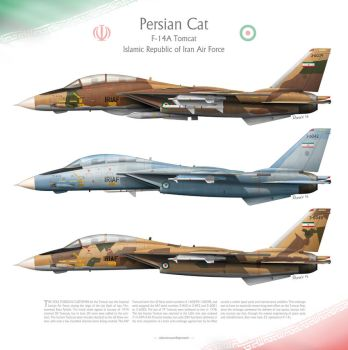 F-14A Tomcat IRIAF -Persian Cat- by 0viking0