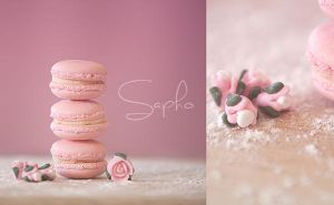 macaroons :3 by SaphoPhotographics