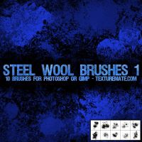 Steel Wool Brushes 1 by AscendedArts