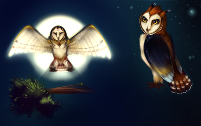 Owls Of Power by AuldBlue