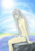 Undertaker on the beach by canaury