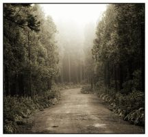 road to nowhere? by miguel-deviant